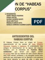 Tribunal Constitucional - Accion de Amparo- Habeas Corpus