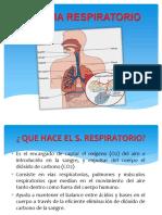 Sistema Respiratorio Eposicion