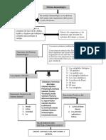 373670691-Mapa-Conceptual-Sistema-Inmune.docx