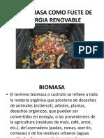 LA BIOMASA COMO FUETE DE ENERGIA RENOVABLE.pptx