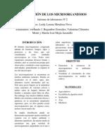DISTRIBUCIÓN DE LOS MICROORGANISMOS - Lab N°2