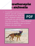 chakras em pets.pdf