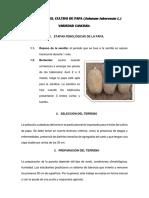 291850751-Informe-Del-Cultivo-de-Papa.docx