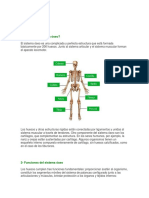 Documento Sistema Oseo