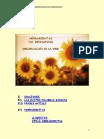 227209066-Herramientas-Ho-Oponopono.pdf