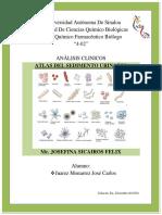ATLAS DEL SEDIMENTO URINARIO JCJM.pdf