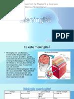meningita (1)