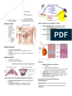 The Adrenocortical Hormones