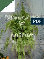 593c0be3230b5002a4a21249_daniel_guillot_ortiz.pdf