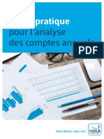Analyse Comptes Annuels