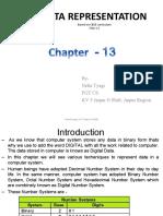 Chapter 13 Engdata Representation