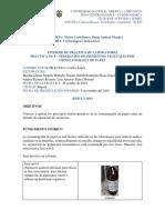 Informe-laboratorio 8 de Noviembre