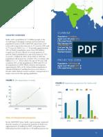 2013-Asia_Pacific_Audit-India_0_0.pdf