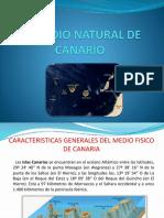 El Medio Natural de Canario