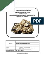 Lab_4_Reconocimiento de minerales sulfuros terminado.docx