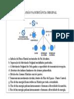cosmogenese1.pdf