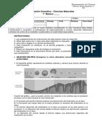 Evaluación Sumativa Reproducción Humana-7° básico