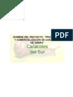 142606892-Proyecto-Caracoles