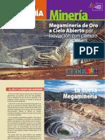 Cartilla-MegamineriaOro02_2.pdf