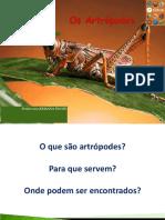 Capítulo 16 - Os Atropodes - 7º Ano - Barros e Paulino