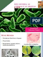 Bactérias e as Arqueas