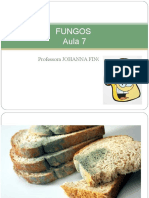 fungos.ppt