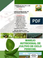 fertilizacion manejo nutricional perecne