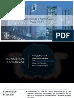 Neurociencias Del Aprendizaje Clase 22-11