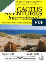 cactus bolivia