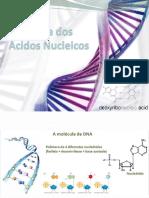 2-Estrutura Do DNA