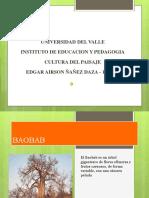 BAOBAB Presentacion