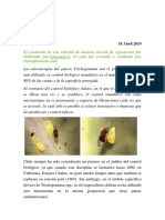 Control Biológico de Polillas-trichogramma