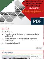 Ic&i - Semana 12 - La Practica Profesional y El Ambiente