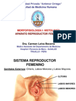 histologia del aparato reproductor femenino