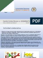 Fase 2 _Camilo Cortes Rincon Cc 1018496471