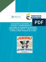 20022018 Lineamientos – UAIC - preliminar (2).pdf