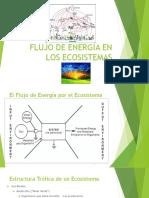 Sesión 3 Energia en Ecosistemas