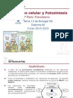 GTP_T13. Respiración Celular y Fotosíntesis (3ªParte_Fotosíntesis) 2013-15