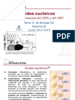 GTP_T11 .Ácidos Nucleicos (1ªParte_Estructura) 2013-15