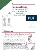 GTP_T11. Ácidos Nucleicos (2ªParte_Replicación) 2013-15