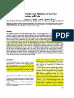 Asian affinities...mtDNA...torroni 93...ok.pdf