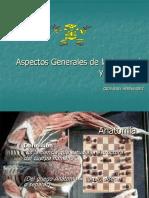 Aspectos Generales Anatomía y Fisiología, Posiciones, Planos, Ejes Corporales.