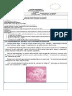 EVALUACION UNIDAD 2 LENGUAJE Y COMUNICACION  4° BASICO 2019.docx