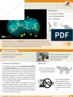 006-toxoplasma-gondii.pdf
