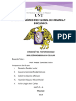 Inv. Formativa 8