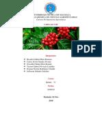 Portafolio-café (1).docx