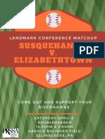 susquehanna baseball flyer