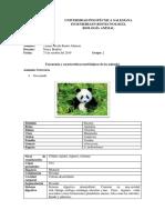 Taxonomia y Morfologia Animal 2.0