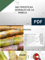 CARACTERISTICAS SENSORIALES DE LA PANELA.pptx