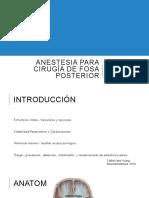 Revision Fosa Posterior